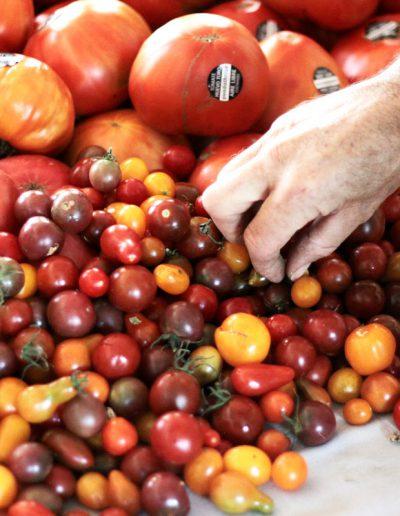 tomates-huevo-de-toro