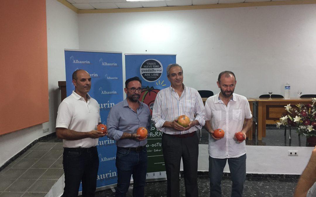 Gran acogida de la Jornadas Técnicas del Tomate Huevo Toro 2019
