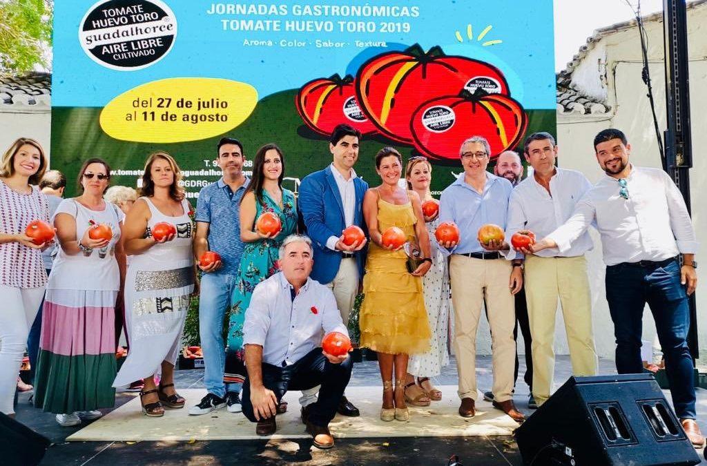 El mejor tomate Huevo Toro Cultivado al aire Libre en el Valle del Guadalhorce en la campaña 2019, adjudicado a Sara Baras por 3.700€