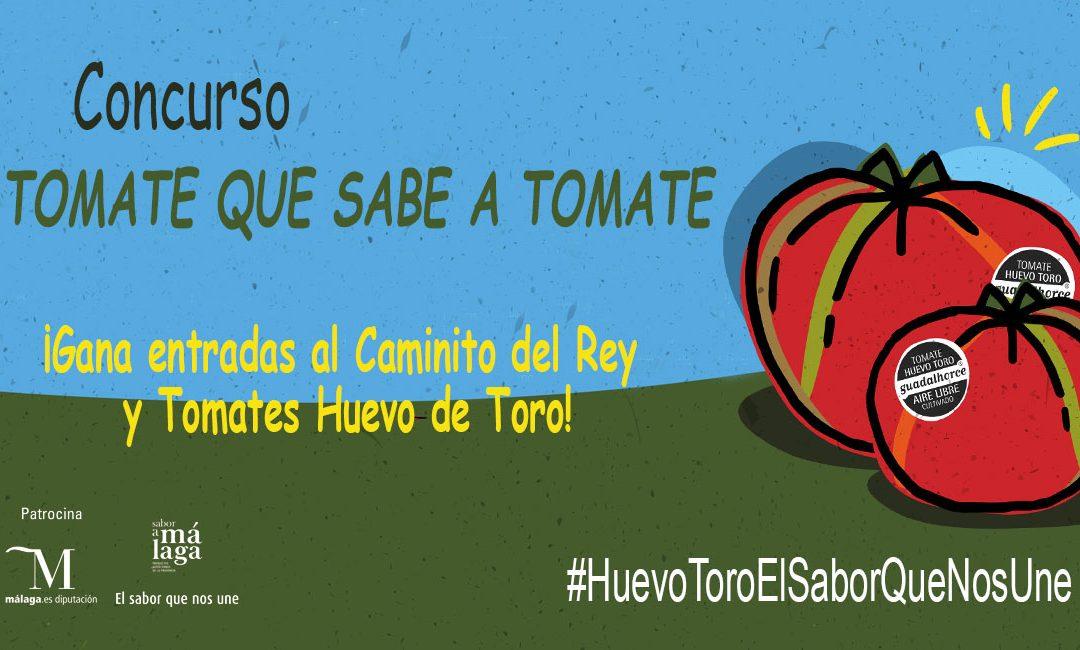 El Concurso Tomate que sabe a Tomate se va animando