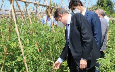 Canal Coín se hace eco de la visita del ministro de agricultura a la huerta de tomate Huevo de Toro